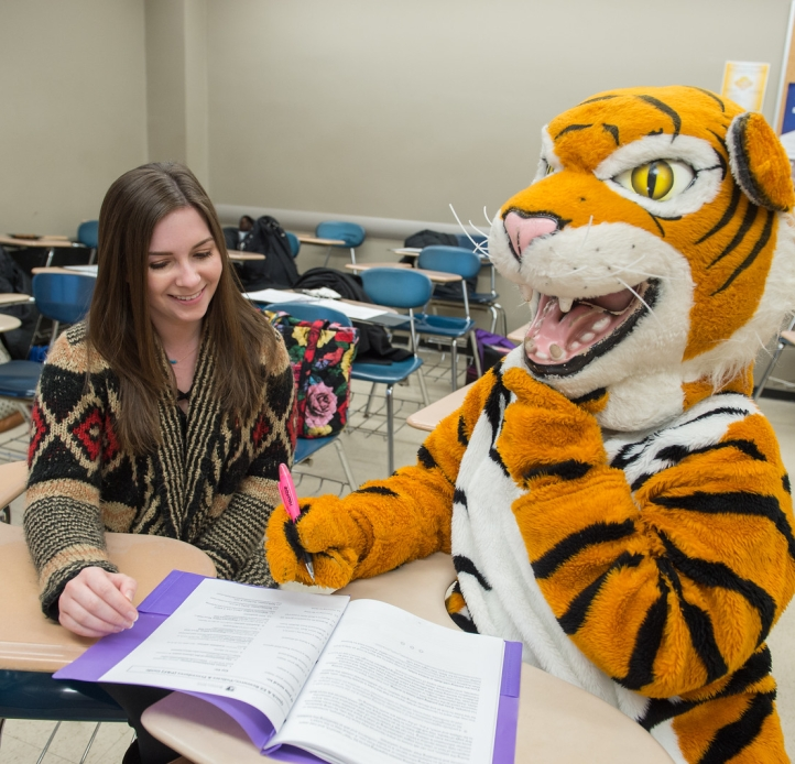 Tutor and Bengal mascot at desk